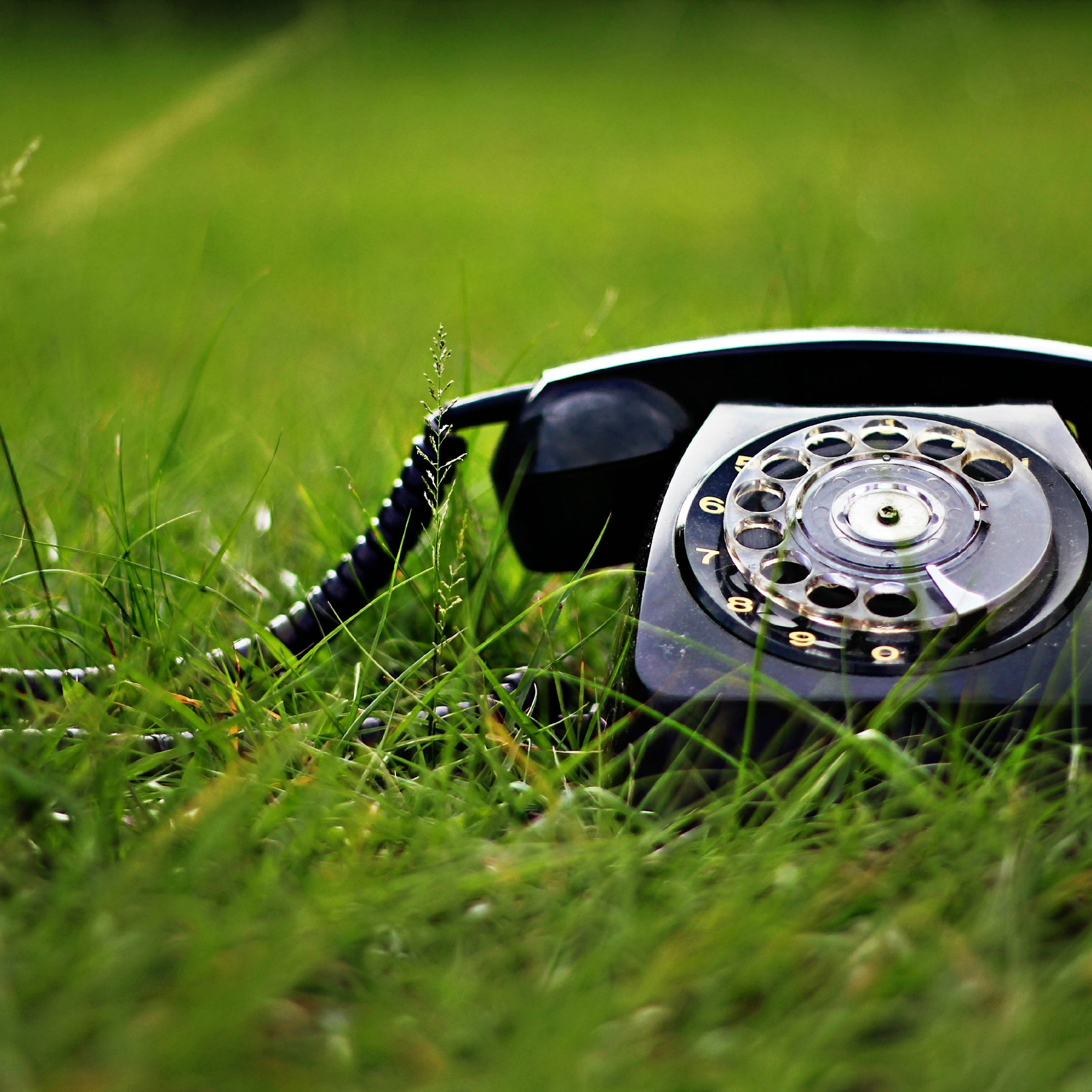 Get in touch ! Old fashioned telephone on the grass